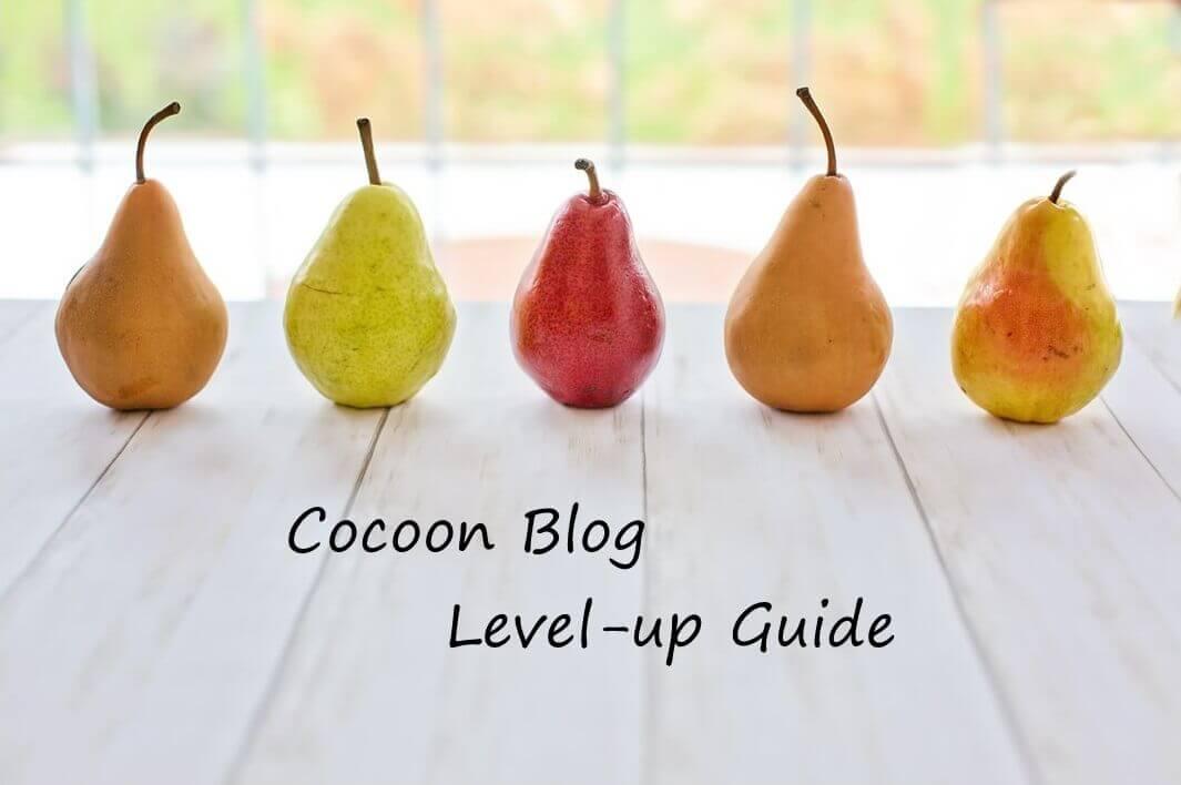 [Cocoon] レベルアップガイド