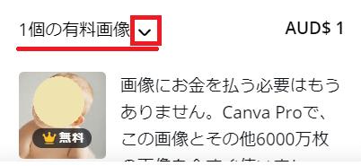 Canva有料アイテムの確認例